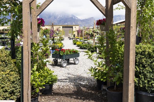 Shade Home & Garden