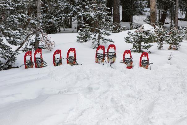 Snowshoes - @Brickmann
