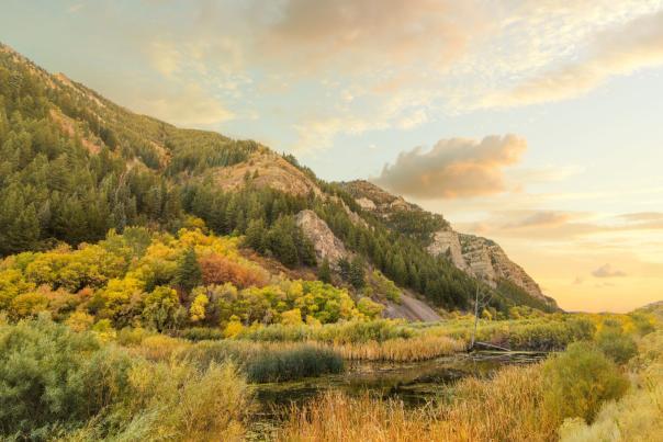 Provo Canyon Falltime