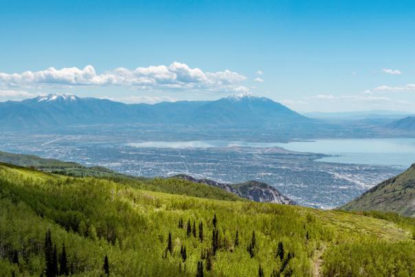 Utah Valley in the Summer