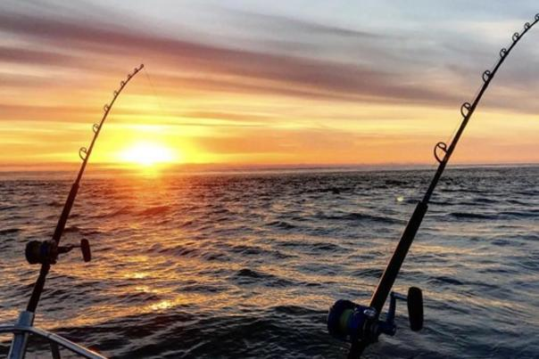 two fishing rods, sunset on ocean in background