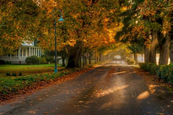 Fall on Officers Row