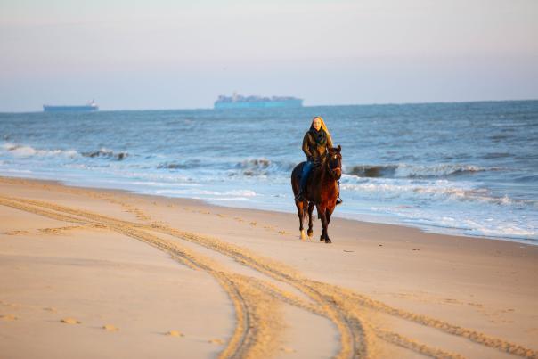 Woman horseback riding on the beach in Virginia Beach winter