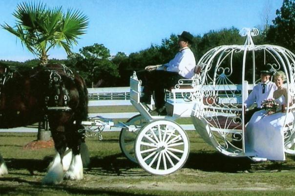 1300824449_cinderella-carriage.jpg