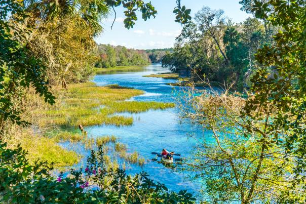 Rainbow Springs near Dunnellon in west central Florida has constant water temperature of 72 degrees and is a mecca for paddlers, snorkelers, and fun-seekers