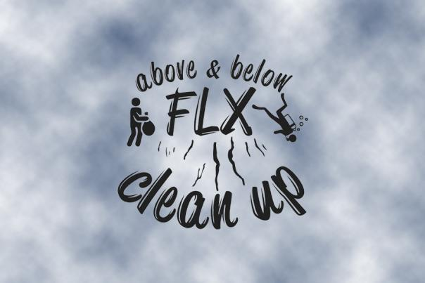 FLX Clean Up