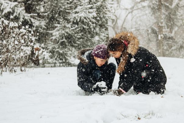 Murdock Park Winter