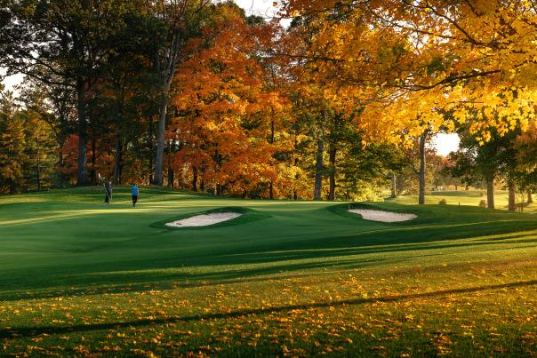 Fall leaves at Ackerman-Allen Course