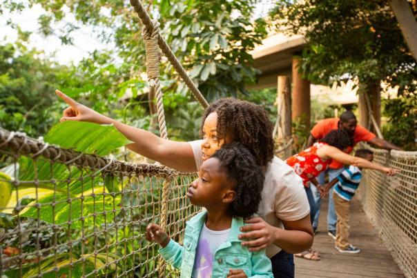 Families Enjoy Sedgwick County Zoo