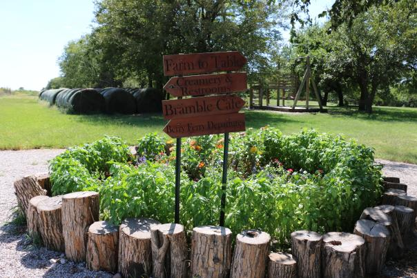 Elderslie Farm Signage