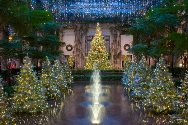 Longwood Christmas Trees