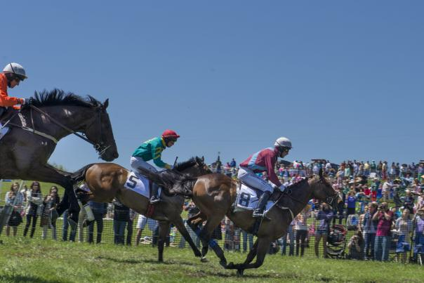 Winterthur's Point-to-Point