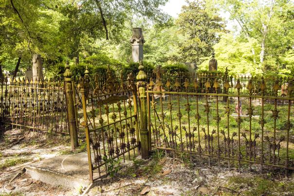 A wrought iron fence at Bellevue Cemetery in Wilmington, NC