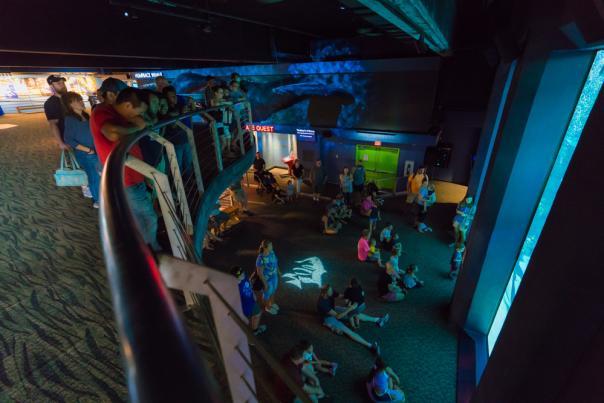 NC Aquarium DRT