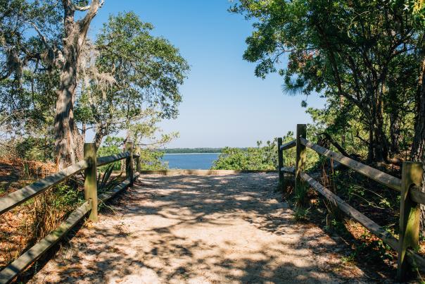 Sugarloaf Dune Trail in Carolina Beach State Park
