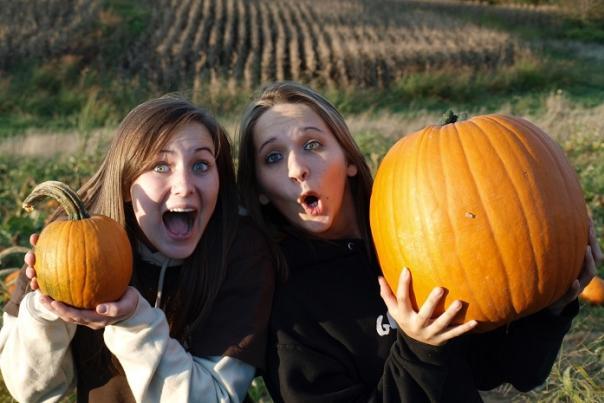 Maple Lawn Pumpkins