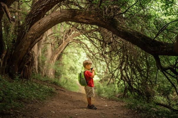 Nixon Park Hiking
