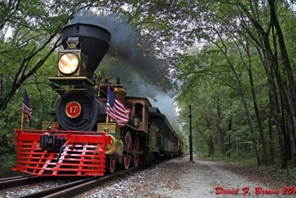 train w flagies