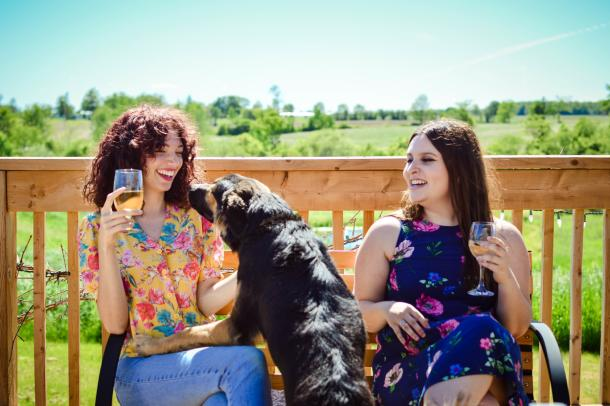 Dog friendly winery