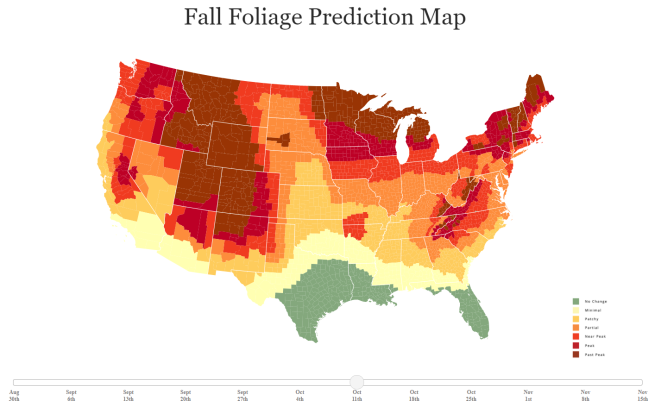 2021 Fall Foliage Prediction Map