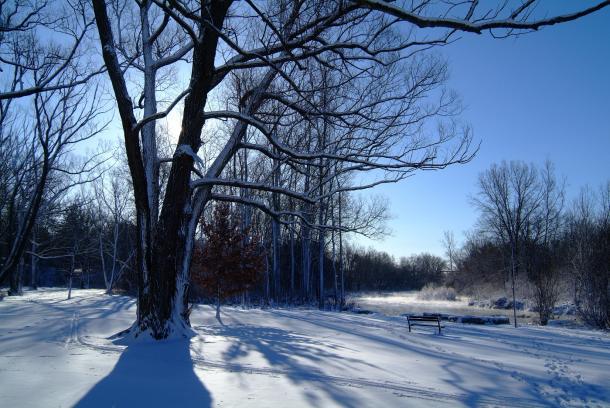 Winter scenic waterfront landscape