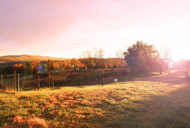 50 west autumn