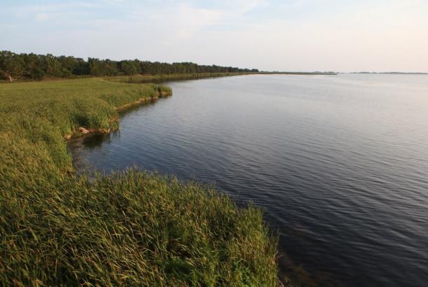 Rondeau shoreline