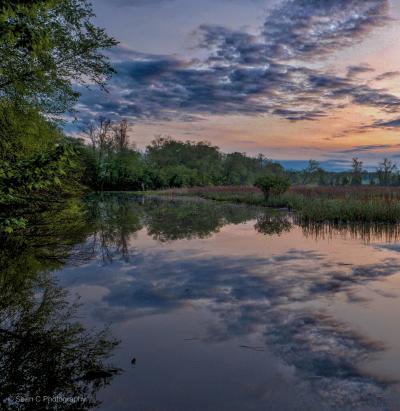 Bush River