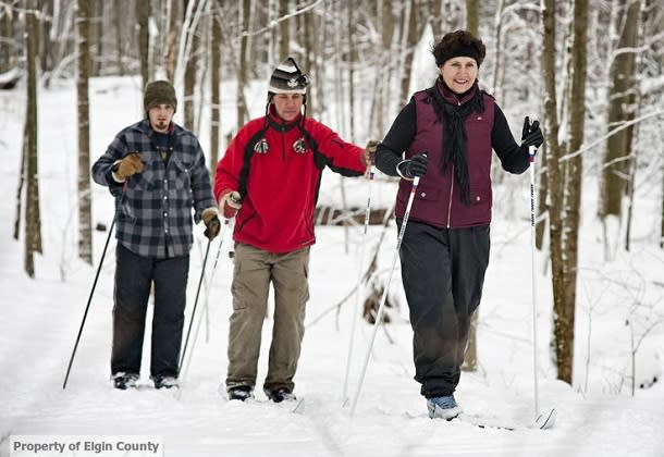 group cross-country skiing