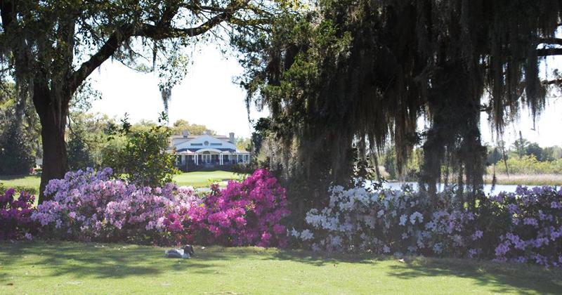 Caledonia Golf & Fish Club in Pawleys Island, SC