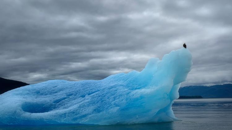Iceberg and Eagle