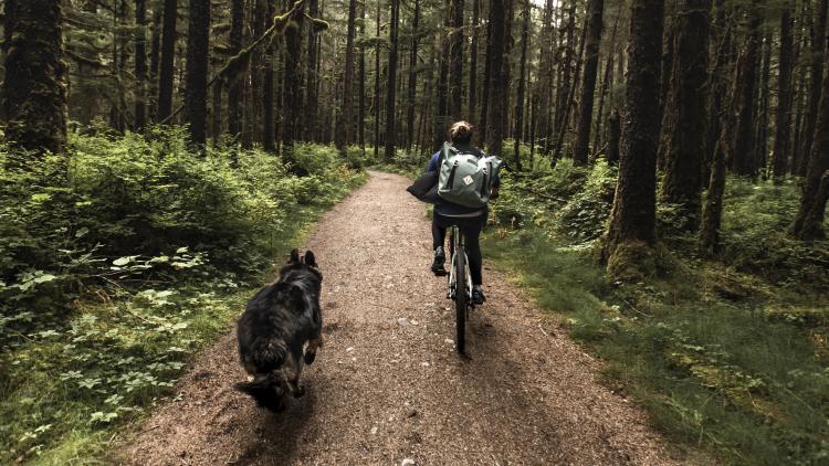 Ride A Trail