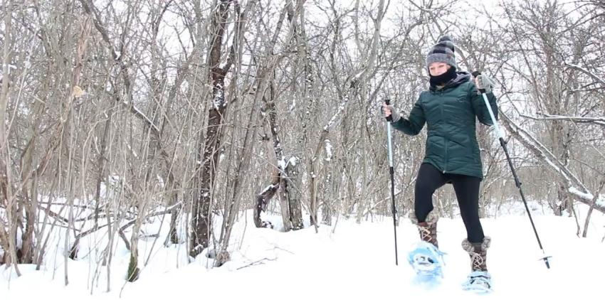 Snowshoeing in the Finger Lakes