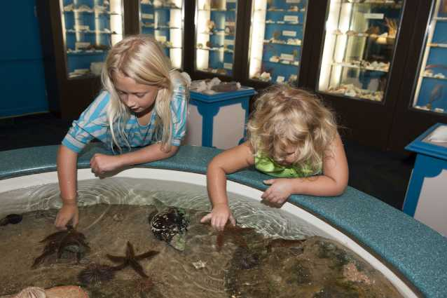 Children at the touch tank at the Museum of Coastal Carolina on Ocean Isle Beach