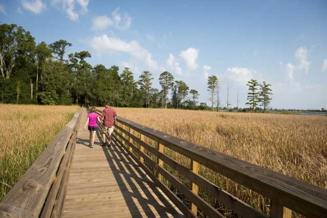 Nature trail and walkway overlooking the Brunswick River