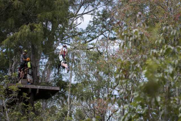 Zipline at The Swamp Park in Ocean Isle Beach