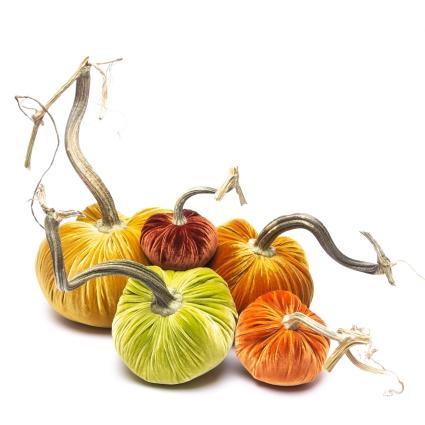 Silk Velvet Pumpkins