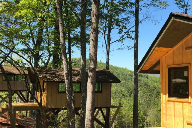 Tree Top Cabins Yogi Bear Jellystone Resort