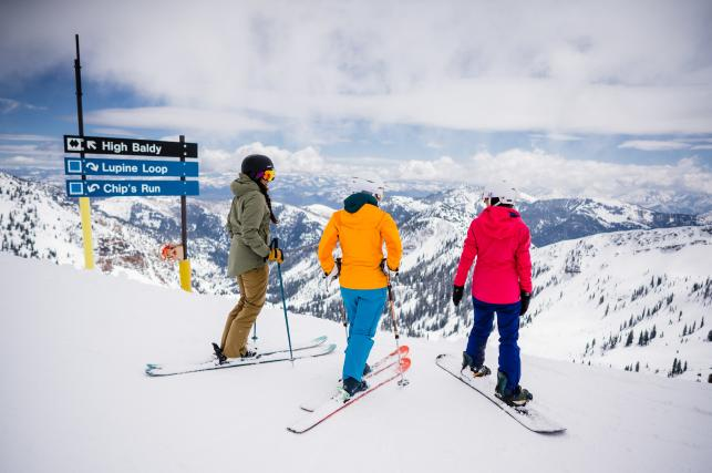 There's so many good runs at Snowbird you could spend all day exploring