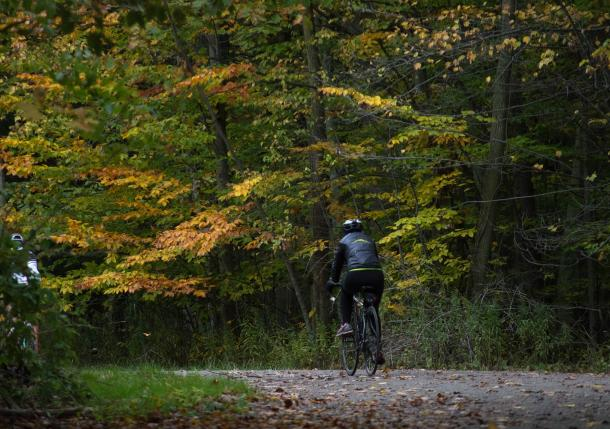 Fall Cycling in leaves