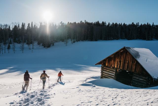 Snowshoeing all Winter