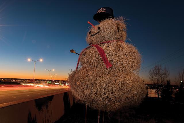 The Tumbleweed Snowman in Albuquerque