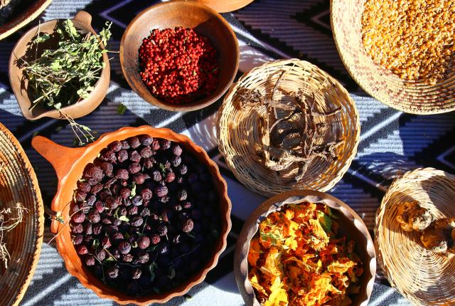 Traditional Native herbs, berries and roots