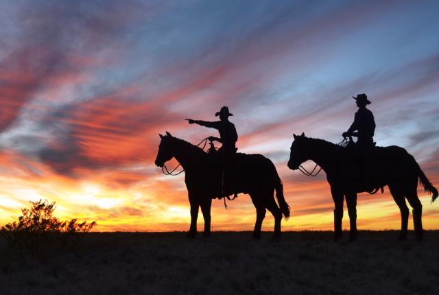 Steel Cowboys