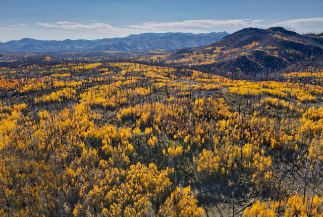Jemez Mountains in fall