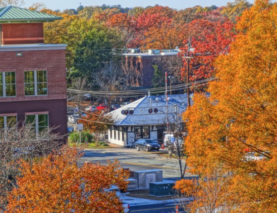 The Station in Carrboro from Rooftop