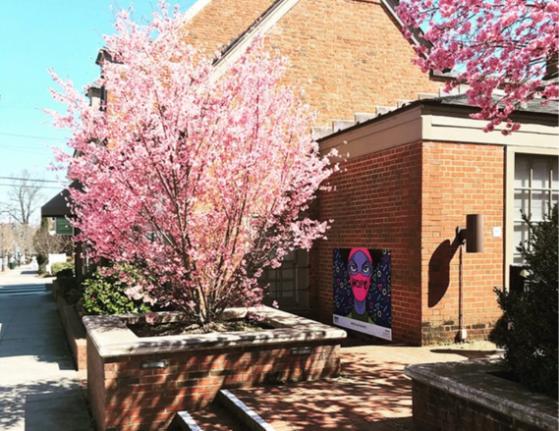 Redbud Tree near Visitors Center