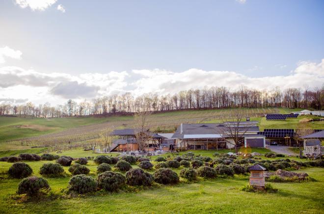 Beliveau Farm Winery - Blacksburg, VA