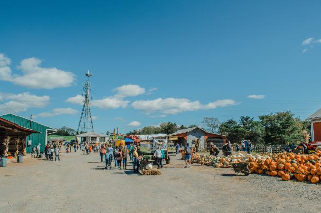 Jeter Farm Fall Festival - Botetourt County
