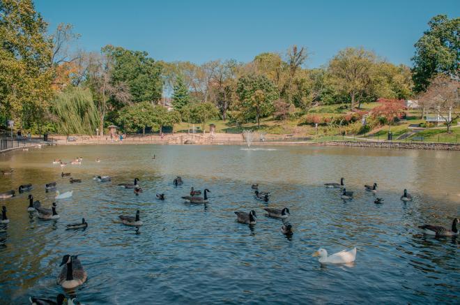 Lake Spring Park - Salem, VA